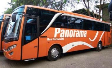 sewa bus pariwisata murah panorama