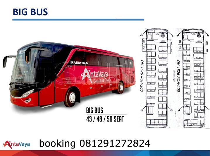 sewa bus pariwisata besar antavaya