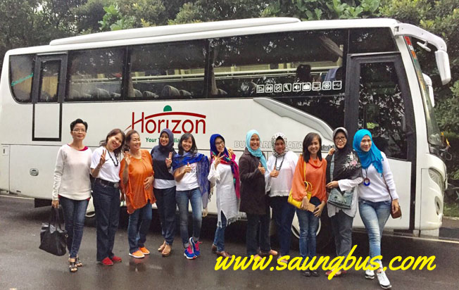 bus pariwisata horizon in action
