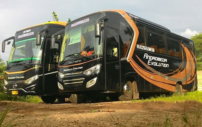 bus pariwisata andromeda medium bus exterior