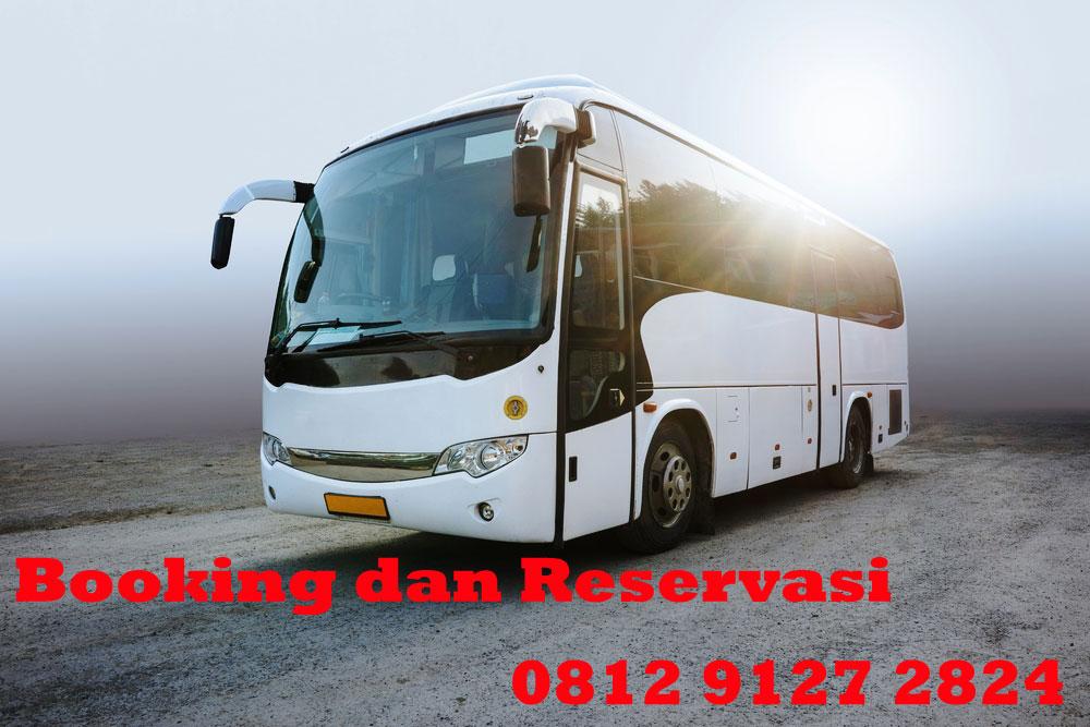 harga sewa bus pariwisata murah di jakarta hanya dari saungbus.com