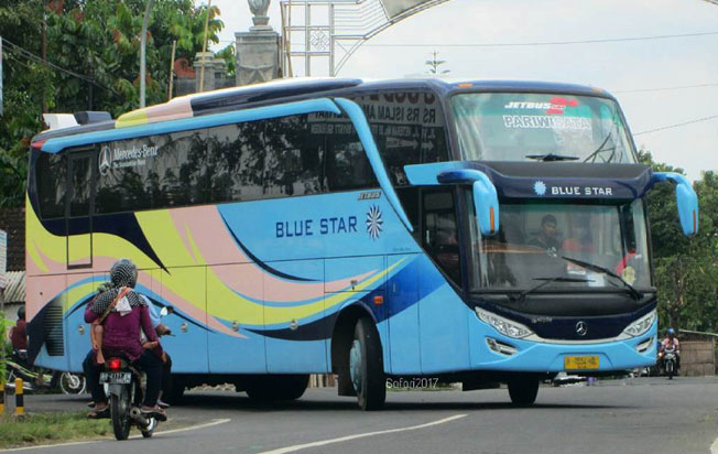 sewa bus pariwisata blue star big bus HDD