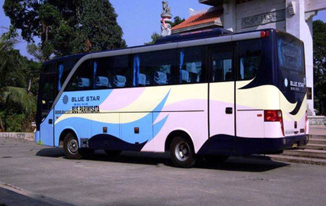 sewa bus pariwisata blue star medium on action