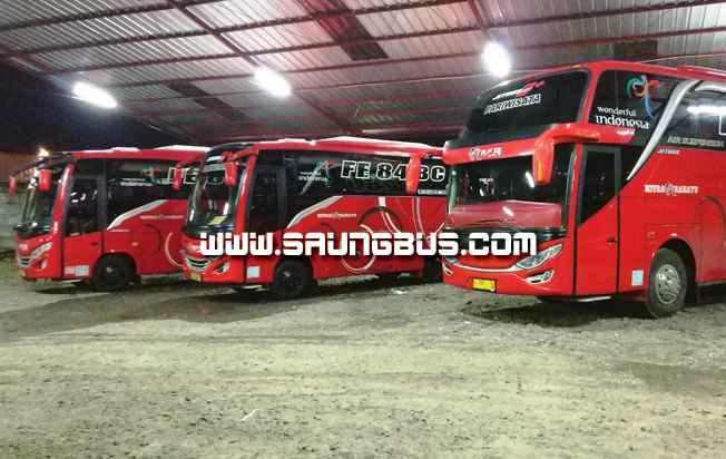 agen-bus-pariwisata-mitra-rahayu-saungbus.com