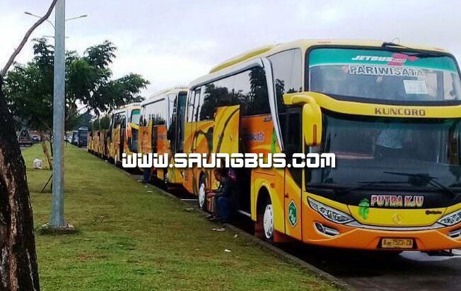 pose ganteng bus pariwisata putra KJU saungbus.com jakarta
