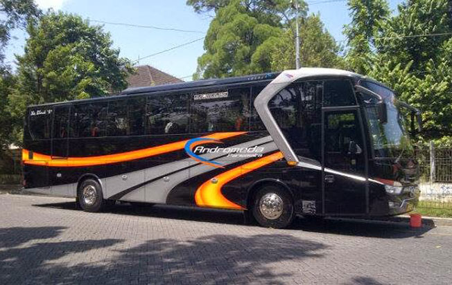 bus pariwisata andromeda in action
