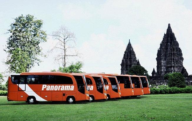 bus pariwisata panorama medium bus