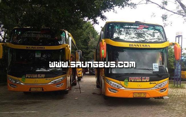 duet kuncoro biantra bus pariwisata putra KJU 59 seat saungbus.com jakarta