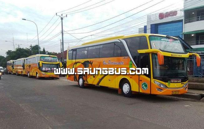 konvoi bus pariwisata putra KJU 59 seat saungbus.com jakarta